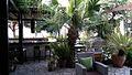 Ambelia Restaurant Situation 3.jpg
