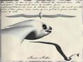 Amerzone 02 - Oiseau blanc.png