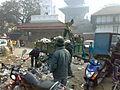 Amiat nepalese.jpg