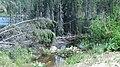 Amiskopi 2.jpg