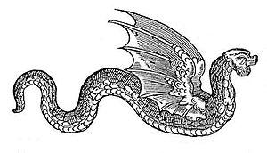 Amphiptere - Amphiptere by Edward Topsell (1608)