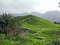 Ancient hill of Alamarvdash.jpg