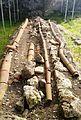 Anciest Plumbing in Gonio Fortress.jpg