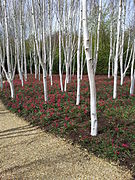 Anglesey Abbey - 001.jpg