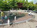 Ansan Sculpture Park 01.JPG
