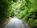 Anstie Lane, Coldharbour, Surrey - geograph.org.uk - 1404632.jpg