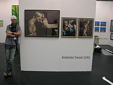 Antonin Tesar Veletrh umeni Art.fair 2011 - Kolin Germany.jpg