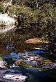 Apsley River, Walcha NSW.jpg