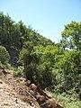 Archaggelos, Greece - panoramio (40).jpg