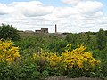 Armadale brick works - geograph.org.uk - 844818.jpg