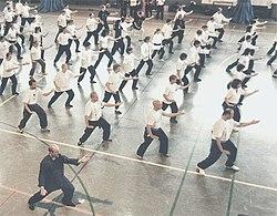Associació Catalana de Choy Li Fut, Tai Chi Chuan i Chi Kung.jpg