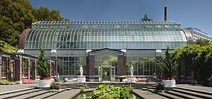 Auckland Domain - View of the tropical hot house of the Wintergardens from the temperate house.