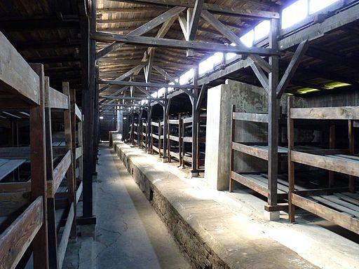 Auschwitz - Bunk beds in Auschwitz-Birkenau