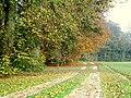 Autumn Colours - geograph.org.uk - 557338.jpg