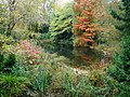 Autumnal Colours at a Lake in Battersea Park.jpg