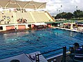 Avery Aquatic Center Stanford, Water polo match.jpg