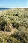 Ayres dunes, Isle of Man.jpg