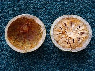 Aegle marmelos - Bael fruit