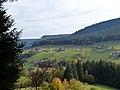 Baiersbronn (10562030475).jpg