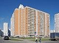 Balashikha, Moscow Oblast, Russia - panoramio (129).jpg