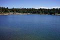 Balsam Forebay above Shaver Lake.jpg