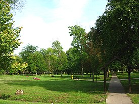 Banatski Despotovac, park in the village centre.jpg