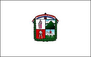 Lambaré - Image: Bandera de lambare paraguay flag