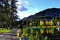 Banff trail.jpg