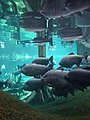 Barcelona Cosmocaixa Aquarium 03.jpg