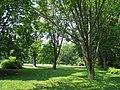 Barnes Foundation, Merion, PA - arboretum lawn.jpg