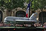 Bastille Day 2015 military parade in Paris 31.jpg