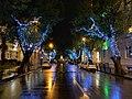 Batumi Christmas lights 14 09 18 294000.jpeg