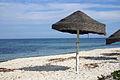Beach2 (239398812).jpg
