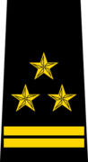 Belarus Police—04 Colonel rank insignia (Black).png