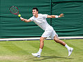 Bernard Tomic 2, Wimbledon 2013 - Diliff.jpg
