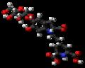 Betanin-zwitterion-3D-balls.png