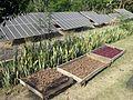 Bhopal Sambhavna Trust 02 (14017644216).jpg