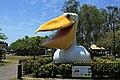 Big-pelican.jpg