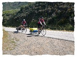 Photo of two bicyclists, each pulling a trailer, on a road