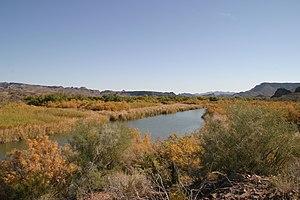 Bill Williams River National Wildlife Refuge - Image: Bill Williams River National Wildlife Refuge 2