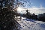 Biosphärenreservat Rhön im Winter 8.jpg