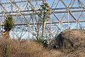 Biosphere 2015 01 18 0055.jpg
