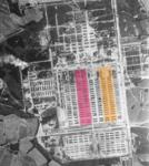 Birkenau aerial photograph BIIb, BIId.png