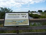 Black Point Wildlife Drive, Merritt Island FL - Flickr - Rusty Clark (204).jpg