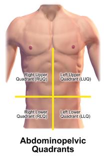 Quadrant (abdomen)