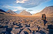 So führte die Schulpflicht dazu dass die angestammte Sprache Inuktitut teilweise in Vergessenheit geriet weil es in der Schule und in Internaten nicht gesprochen werden durfte Da in abgelegenen Gemeinden aber keine Schulen existierten mussten viele junge Inuit Internate besuchen und empfanden die dort aufgezwungene Kultur als großen Zwang