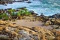 Blue beach island land area.jpg