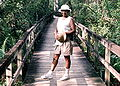 Boardwalk in Everglades.JPG