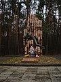 Bohuns'kyi district, Zhytomyr, Zhytomyrs'ka oblast, Ukraine - panoramio (5).jpg