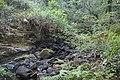 Bosque - Bertamirans - Rio Sar - 044.jpg